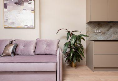 Mieszkanie zakupione z trójmiastowego skupu mieszkań. Na zdjęciu widać kanapę, szafę, obraz oraz roślinę w doniczce.